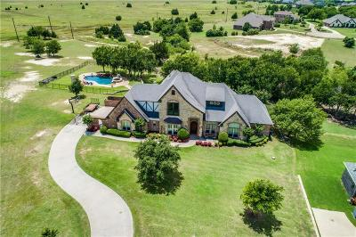 Waxahachie Single Family Home For Sale: 96 Eagle Point Drive
