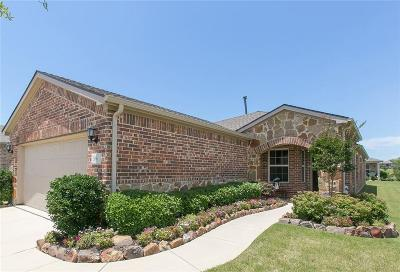 Frisco Single Family Home For Sale: 356 Balboa Court