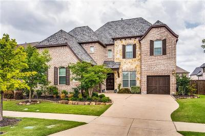 Denton County Single Family Home For Sale: 6618 Silver Stream Lane