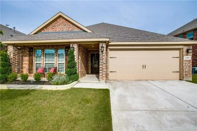 Little Elm Single Family Home For Sale: 1208 Lake Worth Trail
