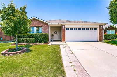 Little Elm Single Family Home For Sale: 1551 Brandywine Lane