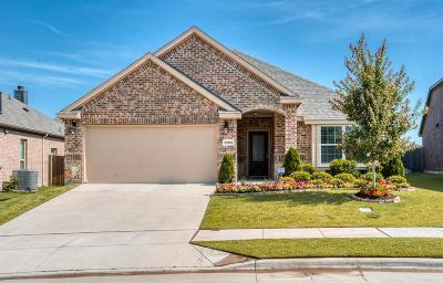 Little Elm Single Family Home For Sale: 1005 Lake Forest Trail