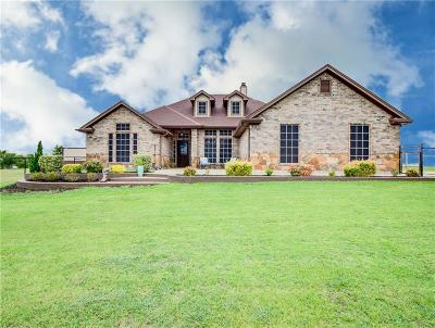Denton County Single Family Home For Sale: 9219 Chisum Road