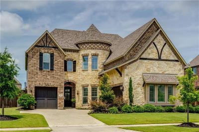 Denton County Single Family Home For Sale: 7249 Greystone Lane