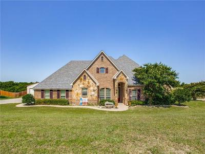 Grayson County Single Family Home For Sale: 463 Ridgeview Drive