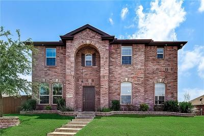 Lancaster Single Family Home For Sale: 1972 Rainwater Way