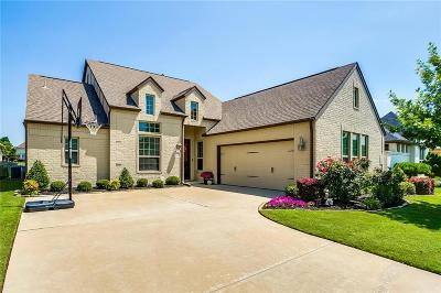Fort Worth Single Family Home For Sale: 813 Merion Drive
