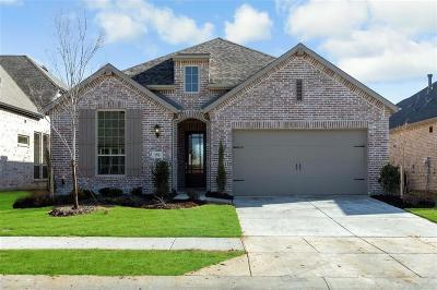 Denton County Single Family Home For Sale: 3212 Discovery Drive
