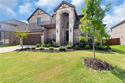 Little Elm Single Family Home For Sale: 1425 Marines Drive