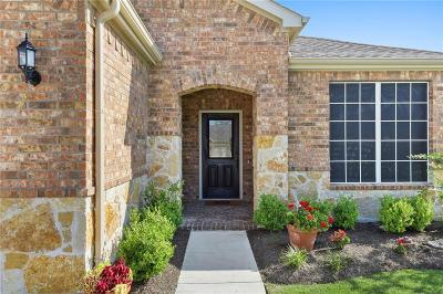 Frisco Single Family Home For Sale: 8279 Turtle Beach Road