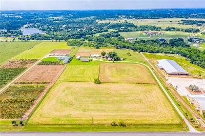 Granbury Farm & Ranch For Sale: 3480 Lipan Highway