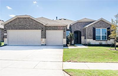 Little Elm Single Family Home For Sale: 724 Freedom Lane