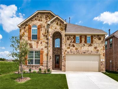 Little Elm Single Family Home For Sale: 1353 Lake Grove Drive