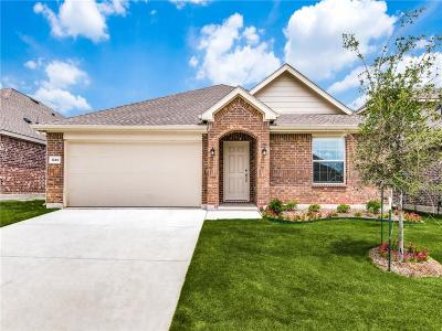 Little Elm Single Family Home For Sale: 1349 Rembrandt Drive