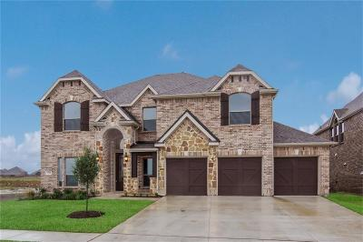 Little Elm Single Family Home For Sale: 1313 Carlet Drive