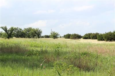 Dublin Farm & Ranch For Sale: Tbd Farm Road 219