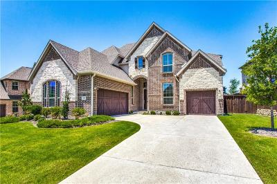 Frisco Single Family Home For Sale: 5385 Highflyer Hills Trail