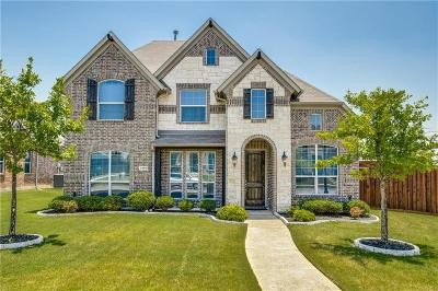 Frisco Single Family Home For Sale: 4500 Twisting Trail