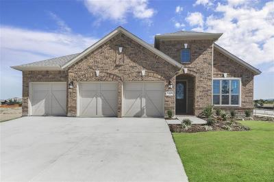 Fort Worth Single Family Home For Sale: 14400 Home Trail