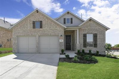 Fort Worth Single Family Home For Sale: 14321 Spitfire Trail