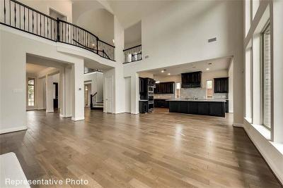 Collin County Single Family Home For Sale: 14289 Esplanada Drive
