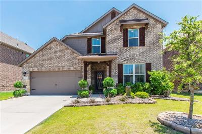 Denton County Single Family Home For Sale: 3425 Bluewater Drive