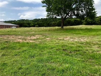 Palo Pinto County Commercial Lots & Land For Sale: Lot 2 W Hwy 180