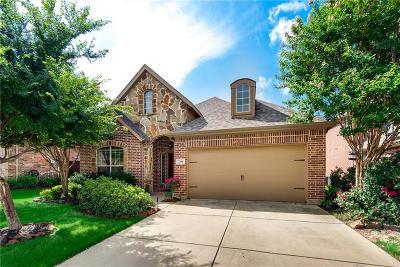 Denton Single Family Home For Sale: 7204 Desert Willow Drive