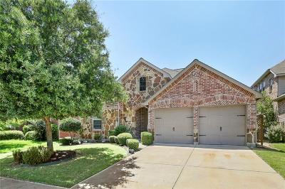 Little Elm Single Family Home For Sale: 516 Hummingbird Drive