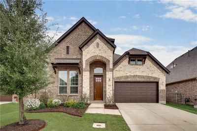 Flower Mound Single Family Home For Sale: 6405 Prairie Brush Trail