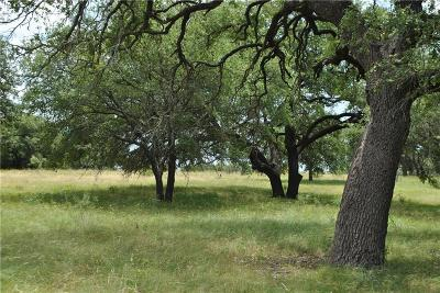 Brown County Farm & Ranch For Sale: Tbd Highway 84 E