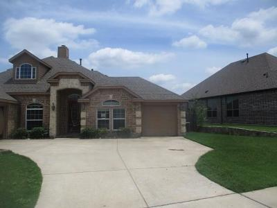Fort Worth Single Family Home For Sale: 8617 Paper Birch Lane