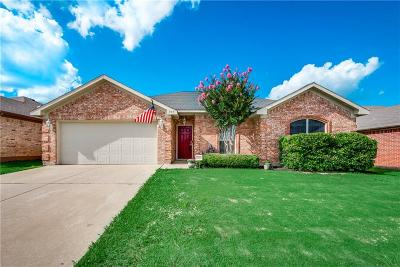 Arlington Single Family Home For Sale: 307 Mesquite Hill Drive