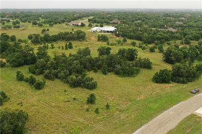 Parker County Residential Lots & Land For Sale: 232 Rocky Run