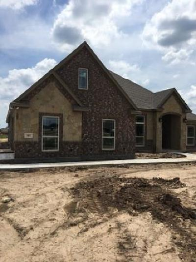 Parker County Single Family Home For Sale: 300 Dillard