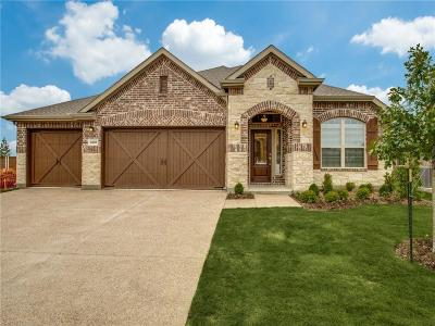 Collin County Single Family Home For Sale: 4228 Cibolo Creek Trail