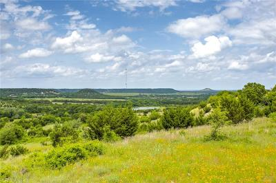 Erath County Farm & Ranch For Sale: 17913 State Highway 220