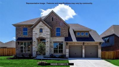 Collin County Single Family Home For Sale: 812 Glen Crossing Drive