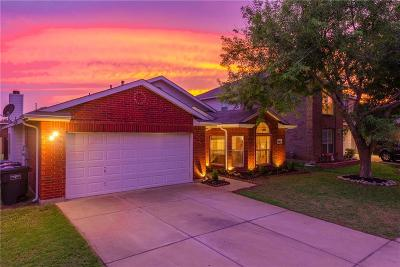 Fort Worth Single Family Home For Sale: 9216 Nightingale Drive