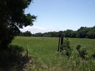 Wise County Farm & Ranch For Sale: Cr 2475