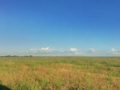 Breckenridge Farm & Ranch For Sale: 0000 County Road 166