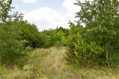 Erath County Residential Lots & Land For Sale: 845 Jimmy Houston Way