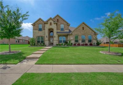 Rowlett Single Family Home Active Option Contract: 8202 Lake Valley Court