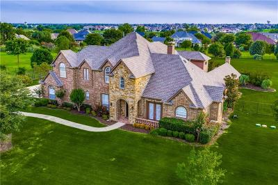 Prosper Single Family Home For Sale: 1541 Winding Creek Road