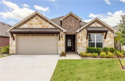 Fort Worth Single Family Home For Sale: 4920 Remington Falls Drive
