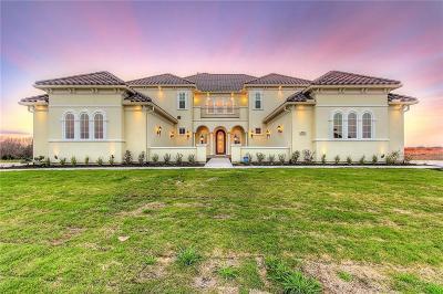Single Family Home For Sale: 321 Honey Creek Lane