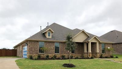 Rockwall Single Family Home For Sale: 3213 San Marcos Drive