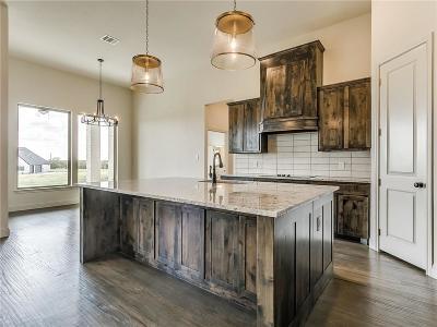 Springtown Single Family Home For Sale: 329 Palo Alto Drive