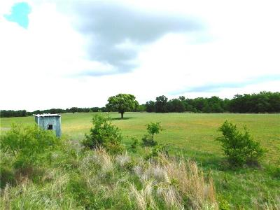 Weatherford Farm & Ranch For Sale: 0000 Advance Road