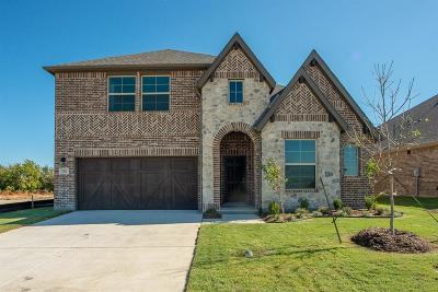 Little Elm Single Family Home For Sale: 13041 Palmera Drive